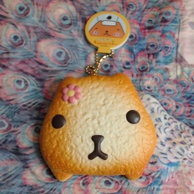 17 Best images about Squishies on Pinterest Kawaii shop, Donuts and Ball chain