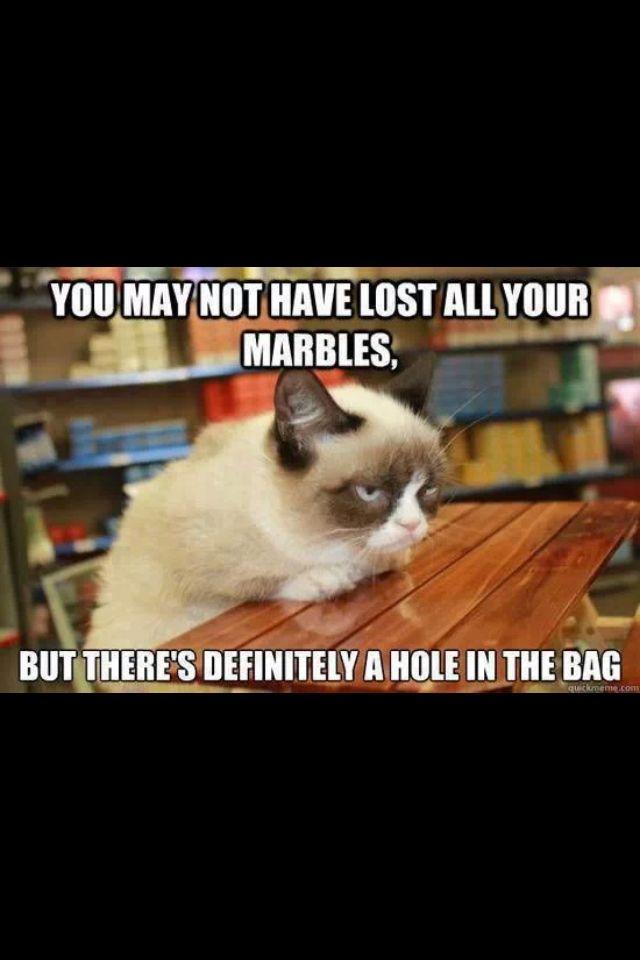 Grumpy Cat Im Done Meme