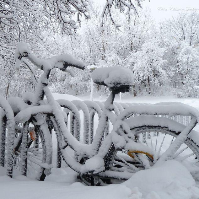vélos sous la neige