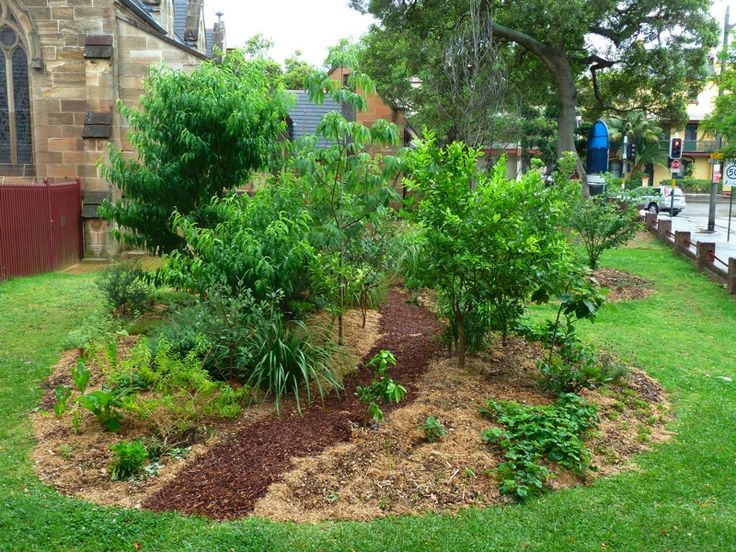 17 best images about permaculture on pinterest raised for Small permaculture garden designs