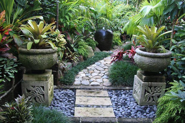 Dennis hundscheidt 39 s tropical garden best tropical for Garden designs brisbane