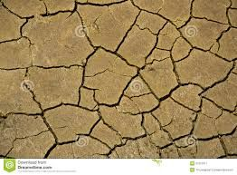 Image result for dried up deserts