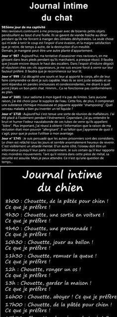 Journal Intime du Chat et du Chien