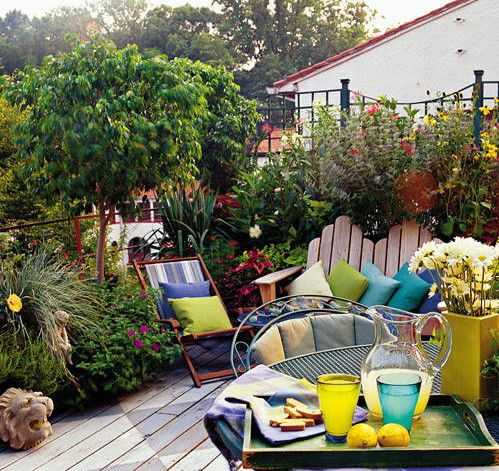 Roof Top Garden #garden Part 69
