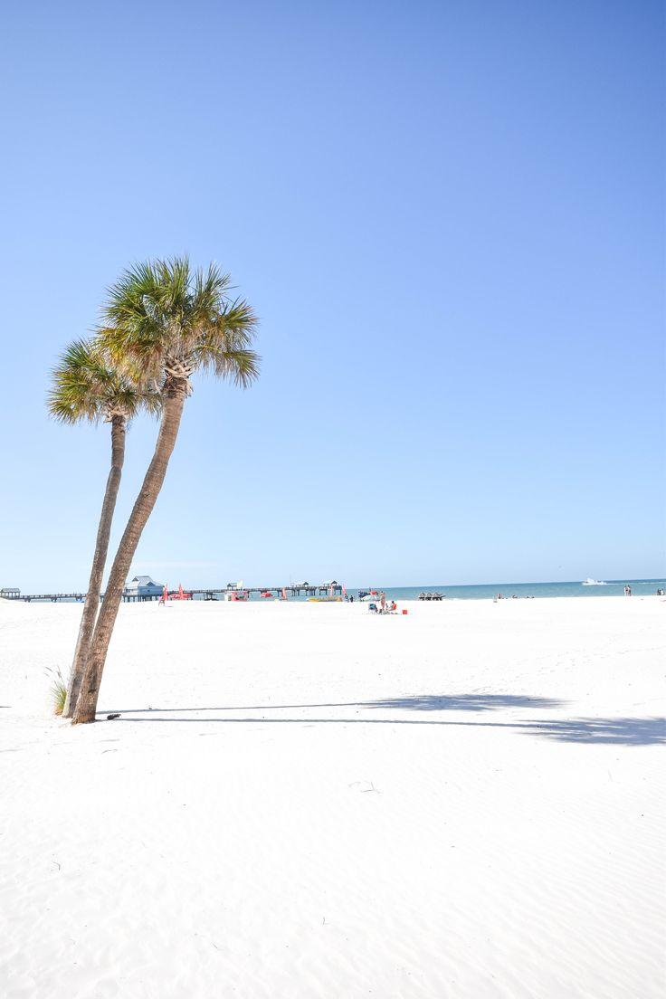 You're beautiful, Clearwater, Florida