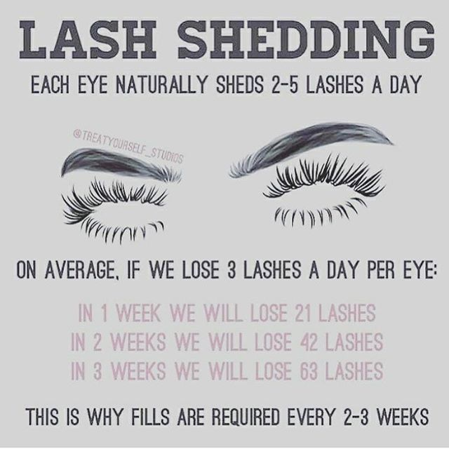 "219 Likes, 14 Comments - Certified Lash Technician (@lashed_byriri) on Instagram: ""Lash shedding is the reason you should be maintaining your lashes with refills every 2-3 weeks. You…"""