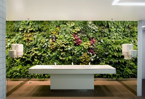 Could we have a vertical indoor garden on a wall?