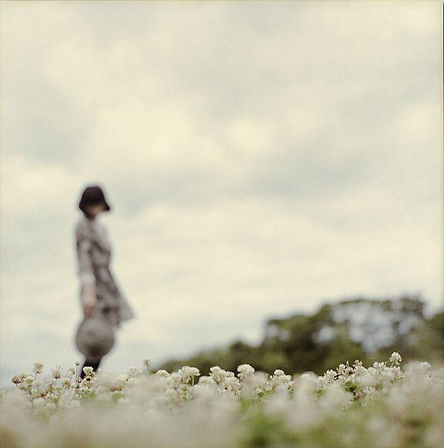 clovers by  Masahiro Makino  simply amazing!!