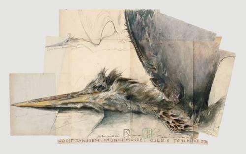 Horst-Janssen-Fischreiher-Oslo-Poster-Kunstdruck-Bild-48x76cm-Portofrei