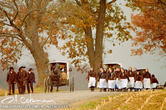 """Tuesdays Wedding"" - Amish women with white aprons walk alongside buggies in fall autumn wedding procession. Amish weddings are typically held on Tuesday's and Thursday's so as not to allow family to prepare without interfering with church services or chores (previous pinner).: Amish Air, Amish Mennonite Hutterit, Amish Country, Amish Bil, Amish Scene, Autumn Wedding, Amish Stuff, Amish Lifestyle, Amish Living"
