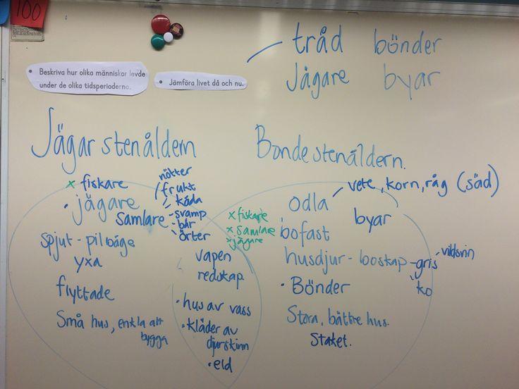Stenåldern: jämföra, samarbeta, beskriva | Malins PPlugg