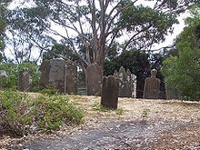 Gravestones on the Isle of the Dead, Port Arthur, Tasmania. Do the tour if you can. The history is brutal but fascinating.
