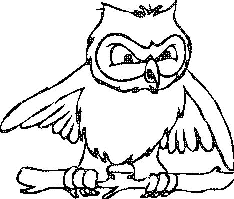 10 best Eule Ausmalbilder images on Pinterest | Owls, Owl and Mandalas
