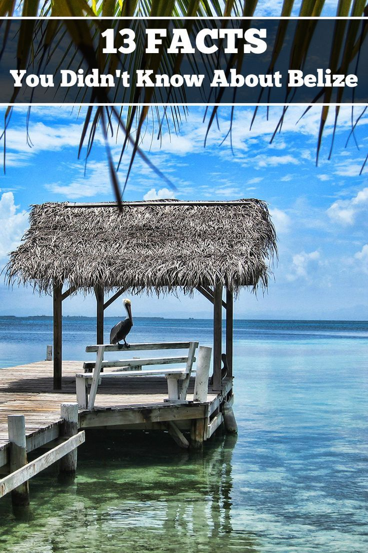 Little known and interesting facts about the wonderful little country called Belize.