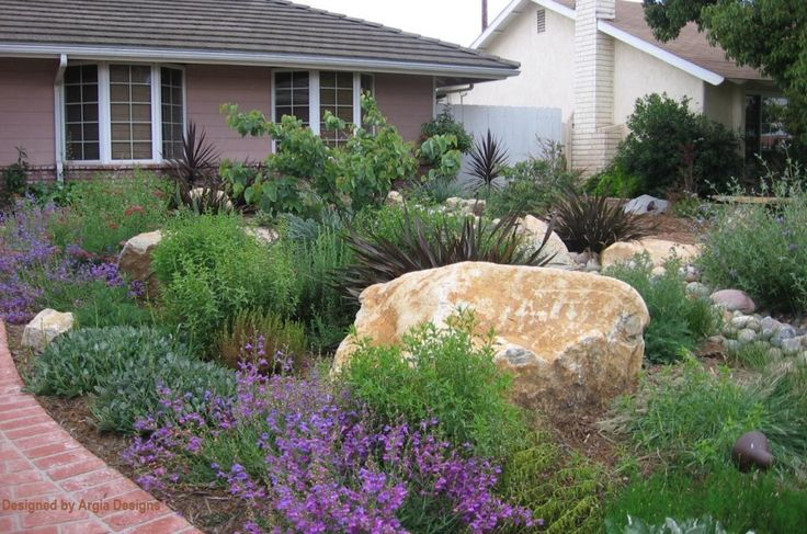 Drought tolerant front yard water conserving landscapes for Drought tolerant front garden designs
