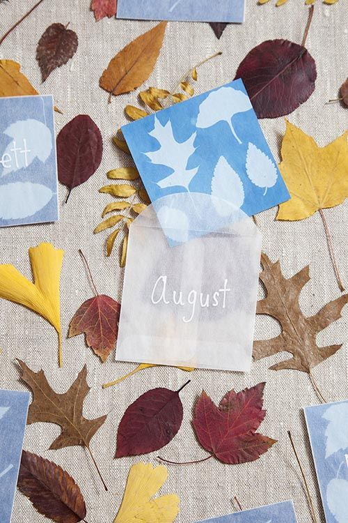 DIY Sun print place markers. Turn a scientific craft with kids into fall party decor.