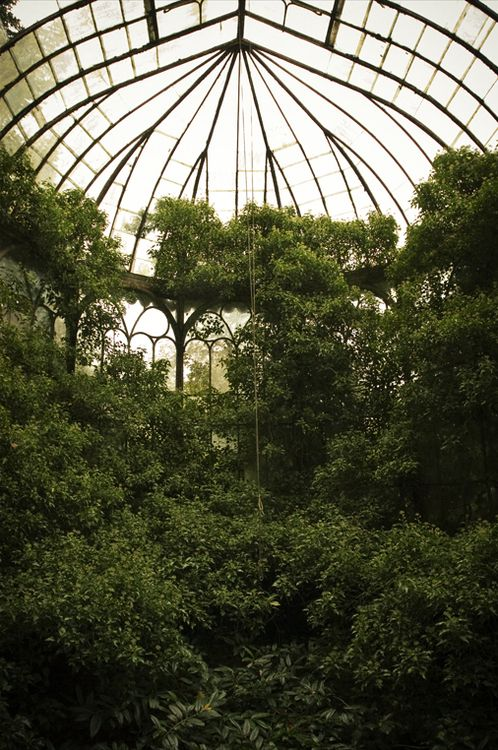 steampunktendencies:  Chateau R., Greenhouse