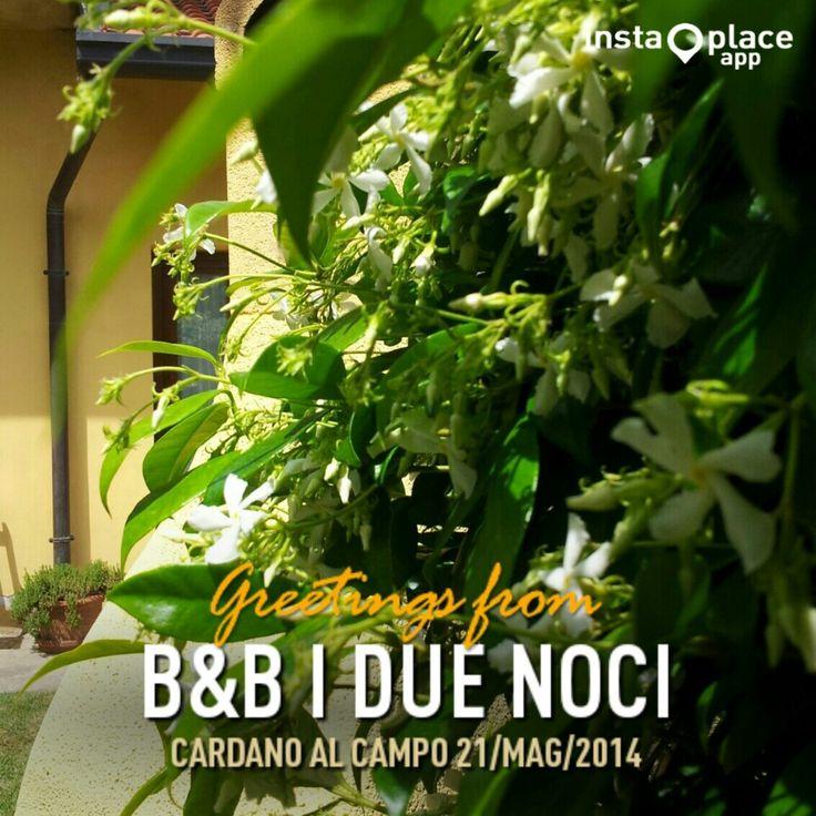 B&B I Due Noci in Cardano al Campo, Lombardia