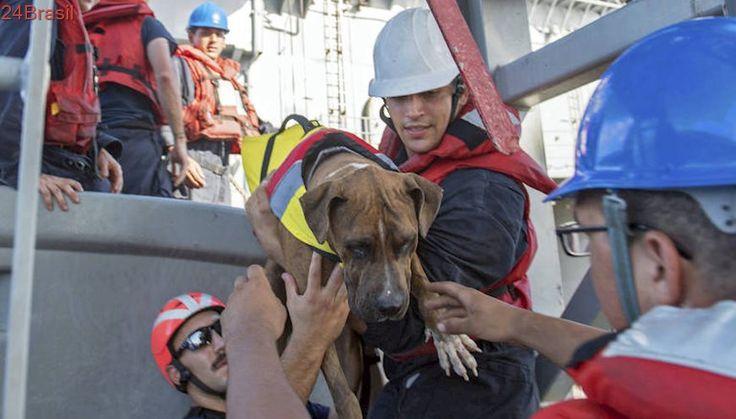 Perdidas no Pacífico ou golpe? | História mal contada? Autoridades questionam relato de resgate de dupla