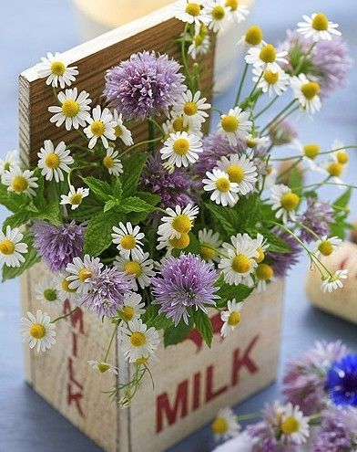 sweet wildflowers
