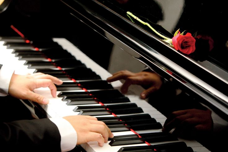 Did You Know That Piano Players' Brains Are Altogether different From Every other person's Read More Here>>  https://goo.gl/LwwCn2