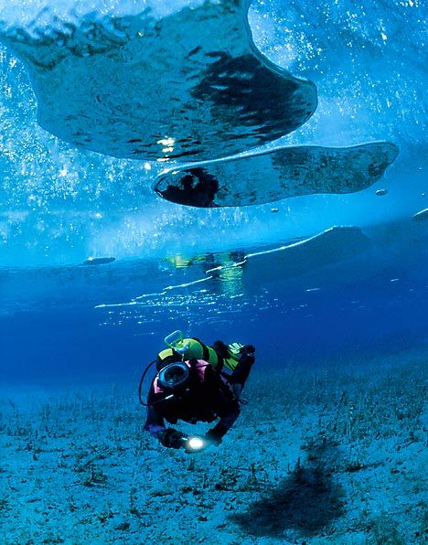 Fed up of skiing? Try the next big thing: ice diving OOOOO NOW THATS MY KIND(a) WINTER SPORT!