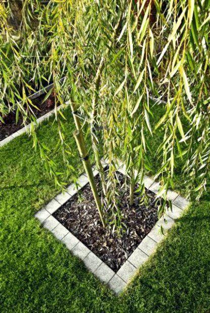 Ułożona z betonowych kostek brukowych skromna i prosta ramka wokół młodego drzewka może nadać roślinie elegancki, wyrazisty charakter