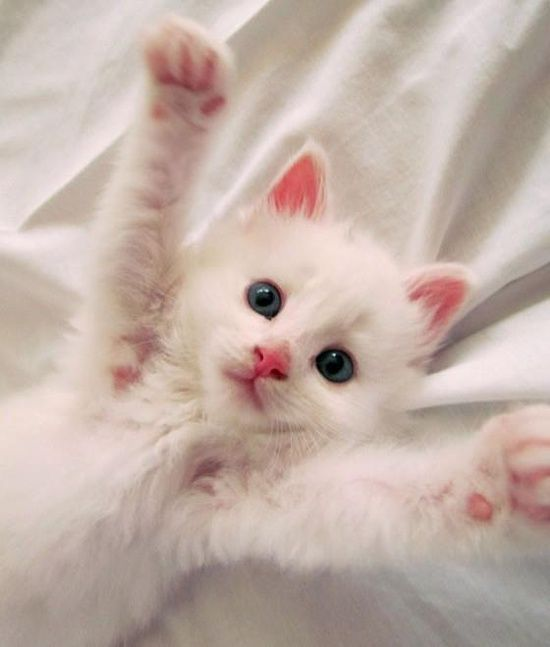 I want you to pick me up right now!!!!!! I need some cuddling and kisses........