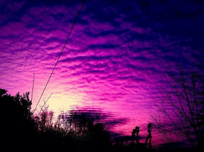 Хотя в это трудно поверить, небо на самом деле фиолетовое. Когда свет попадает в атмосферу, воздух и вода частицы поглощают свет, рассеивая его. При этом более всего рассеивается фиолетовый цвет, поэтому люди и видят голубое небо.