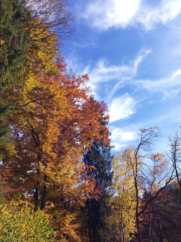Die schönste Monate am Badersee: September und Oktober ...
