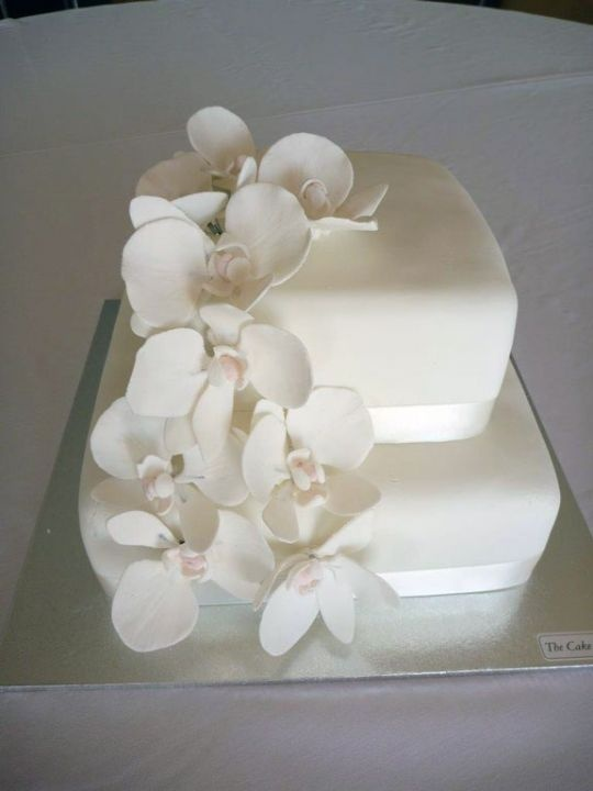 sugar orchids for cakes pdf