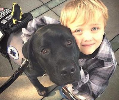 Learn about the benefits—and pitfalls— of diabetic alert dogs. If you have type 1 diabetes and are hypoglycemic unawareness, an alert dog can help keep you safe.