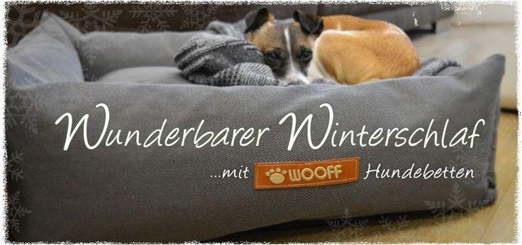 Schönes und Nachhaltiges für Hund & Halter im dogadoo Online-Shop