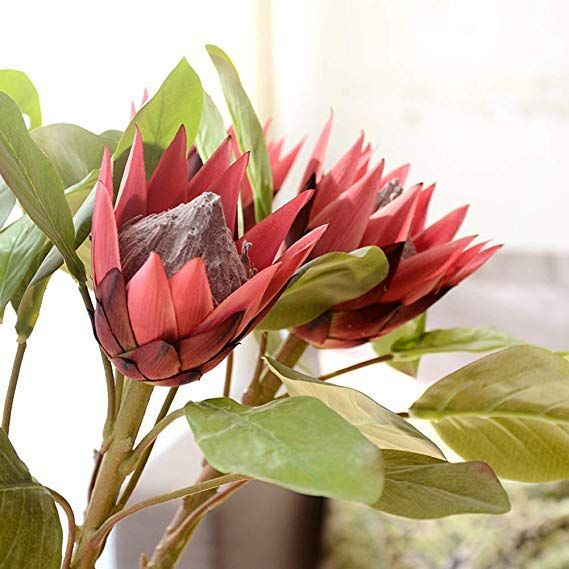 Akomatial Artificial Flower King Protea Fake Simulation Flowers Plant Diy Bouquet Party Decor For Wedding Wine Red Akomatial Artificial Bouquet Decor Diy F In 2020