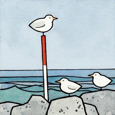 Coastal Birds  (I love the look of the sea)
