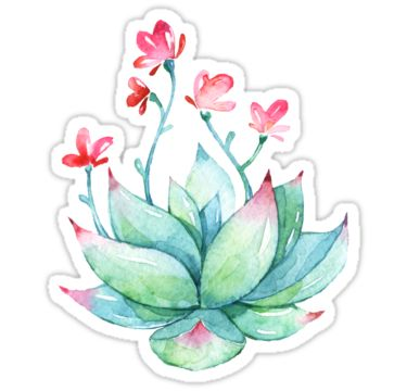Watercolor Succulent sticker • Also buy this artwork on stickers.