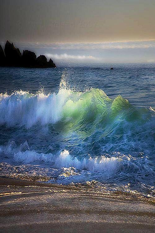 ✯ Sea Surge, Australia