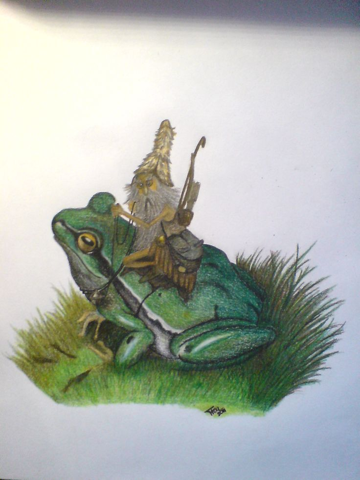 A frog rider, according to JBMonge