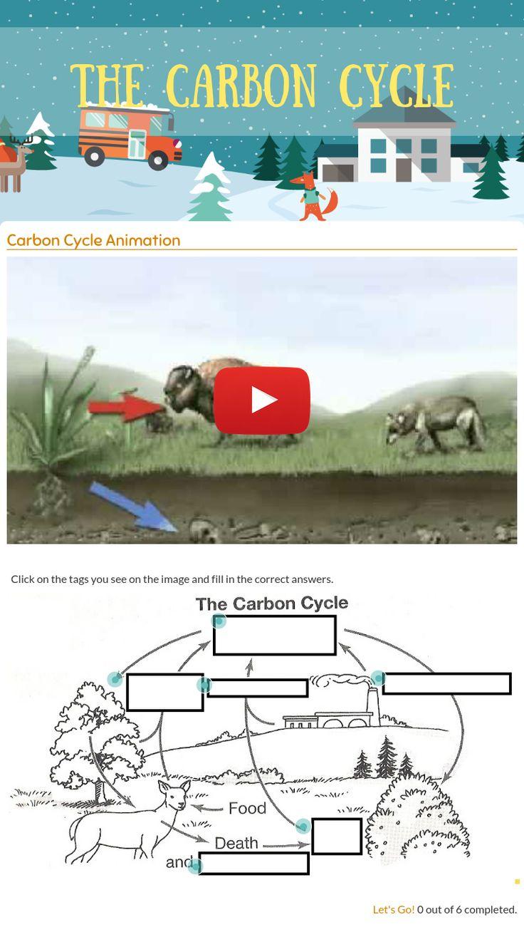 worksheet Carbon Cycle Diagram Worksheet Luizah Worksheet And – Carbon Cycle Diagram Worksheet