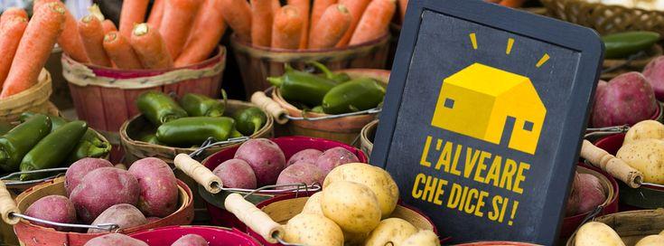 I produttori incontrano i consumatori e si creano legami di fiducia e sostegno reciproco. E' la filosofia dell'Alveare che dice sì, una rete di gruppi d'acquisto che si sta diffondendo in tutta Italia. Sono già 150 i gruppi formatisi.