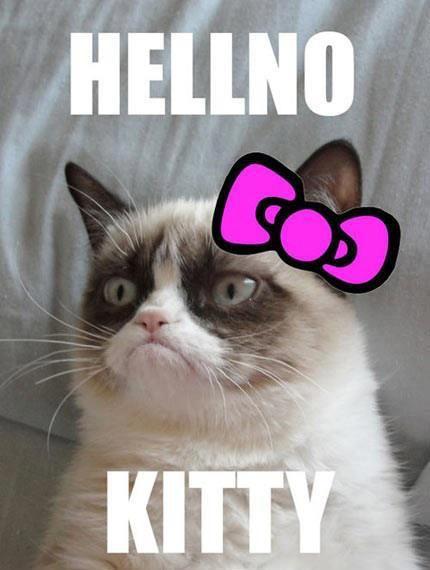 Haha, love me some grumpy cat