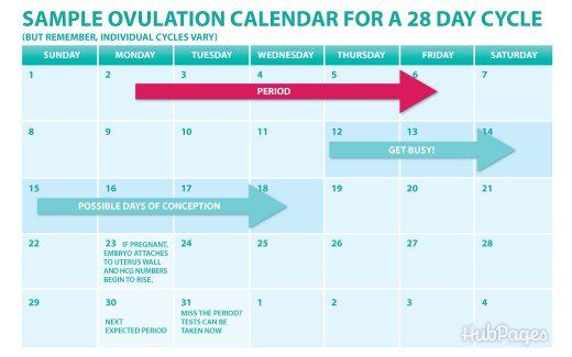 Track your cycles to know when you ovulate and when you can test for pregnancy. It can be done on a basic calendar like this or even on an app on your cell phone!