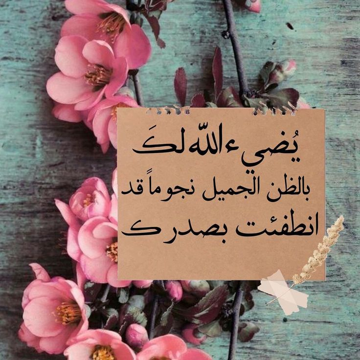 Pin By عبق الورد On أقول حكم ونصائح In 2021 Place Card Holders Arabic Quotes Place Cards