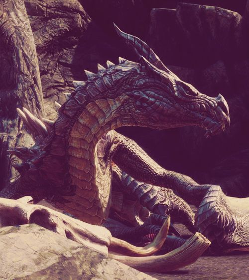 Dragons - and the overarching myths and legends that surround them