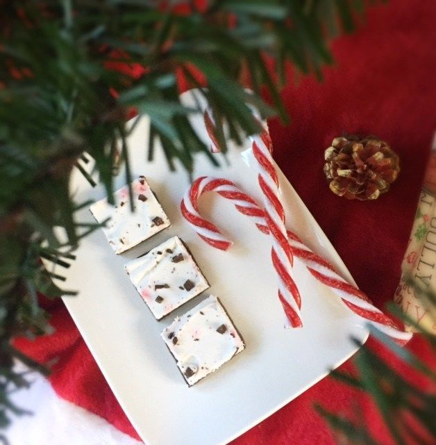 I pretty much have to tear myself away from all the peppermint bark that surrounds the stores and parties that happen this time of year. It's definitely a seasonal favorite but I am good abou…