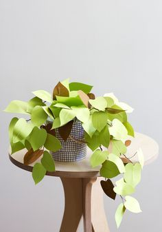 DIY paper heart leaf philodendron - The House That Lars Built