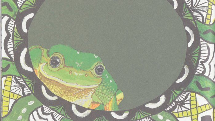ABC Spash Video I Guulaangga, The Green Tree Frog - Identity, Culture, Storytelling