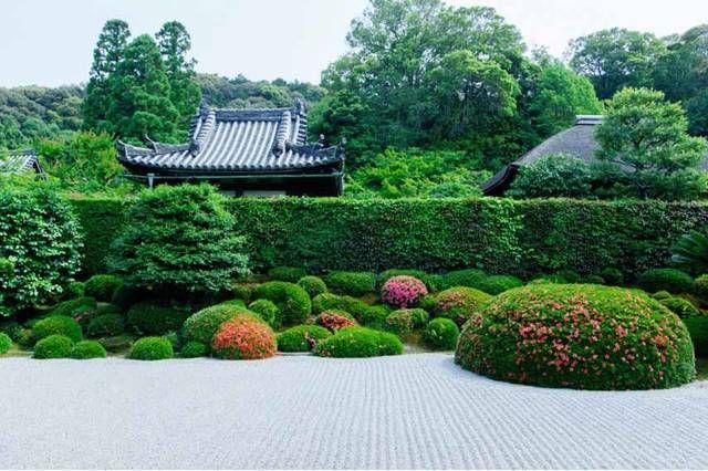 """夏休みも直前!""""見て、触れて、食べて""""今年の夏に行きたい、五感で楽しめるお茶の京都スポット"""