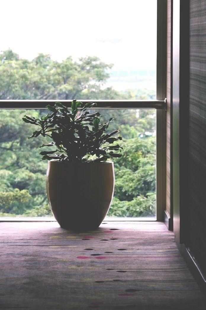 Pin By Deborahlucila On Best Home Decor Ideas In 2018 Pinterest