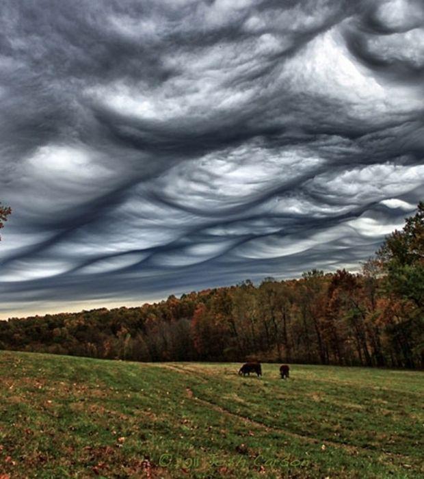 Photo : De menaçants nuages appelés undulatus asperatus                                                                                                                                                                                 Plus